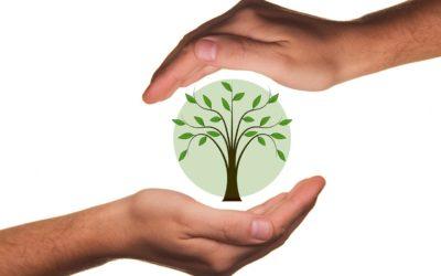 Ecocitoyenneté et respect de l'environnement